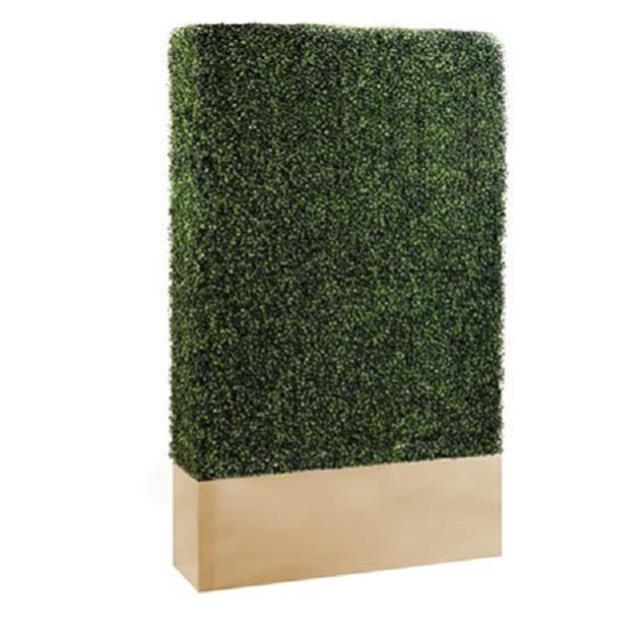 Where to find GOLD BOXWOOD WALL in Nashville