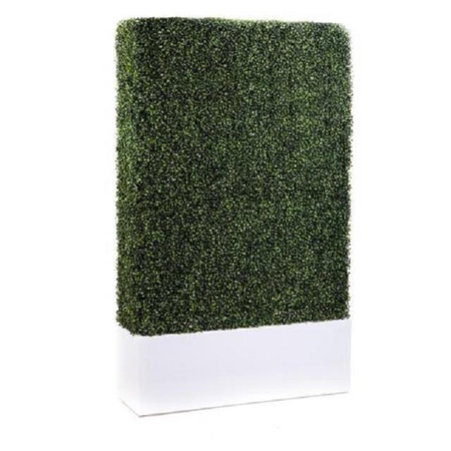 Where to find WHITE  ILLUMINATED  BOXWOOD WALL in Nashville