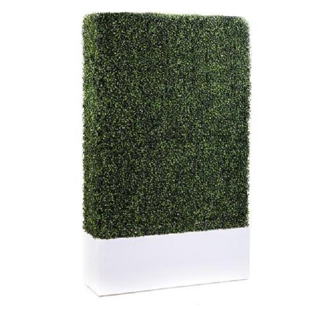 Rent Boxwood Walls